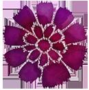 wlc flower